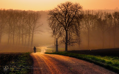 morning walking (Piotr.Krol) Tags: morning walking piotr bax moravia krol baxteria truthandillusion