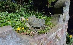 In the Chinese Garden at Biddulph Grange (robmcrorie) Tags: history gardens john garden patient health national doctor nhs trust service british nurse staffordshire healthcare grange bateman biddulph