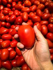 (傑森林 (Jason Lin)) Tags: fruit tomato hand ridgeway 2015 iphone5s