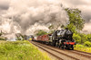 """GCR_2015_06_14__322 (Phil_the_photter) Tags: leicestershire central loughborough """"black gcr steamloco jinty 8f """"evening """"great woodthorpe 9f 92220 92212 45305 43106 44814 pig"""" 47203 47406 48121 48624 star"""" railway"""" """"flying engine"""" """"steam five"""" woodhouse"""" halse"""" """"quorn """"woodford"""