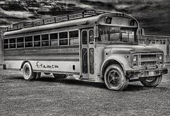 #باص #باص_التعليم #سيارات #نقل #احادي (فيصل تميم) Tags: باصالتعليم سيارات باص نقل احادي
