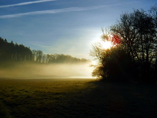 Light, Mist and Shadow