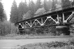 wiadukt (MichalKondrat) Tags: kolej podróż wiadukt pociąg