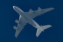 Lufthansa Airbus A380-841 D-AIMC (Thames Air) Tags: lufthansa airbus a380841 daimc contrails telescope dobsonian overhead vapour trail