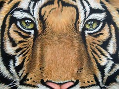 Tiger's Last Roar - Detail (Nicole Zeug) Tags: portrait animal cat big tiger hunting endangered acryl tier jagd malerei raubkatze zeug