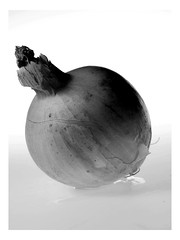 Textured Onion... (ShannonBell_) Tags: lighting food white black water vegetables studio drop onion