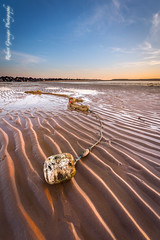 Ripples in the Sand (Rob Grainger) Tags: sunset sea sky seascape reflection beach water clouds bay twilight sand nikon ripple filter lee clacton buoy martello beachscape 1424mm sw150