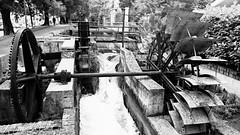 Watermill (Amici del gioved (e della topa)) Tags: city blackandwhite bw mill water river channel watermill urbanlandscape udine roggia