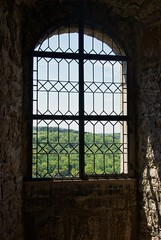 window (Navas) Tags: castle germany neckar burgguttenberg sonydt16105mmf3556sal16105