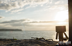 No se lo quiso perder (PeRRo_RoJo) Tags: sunset sea sky espaa sun sol beach water landscape atardecer mar agua cloudy sony wave playa cielo nube ola cantabria suances danbo loslocos dslra580
