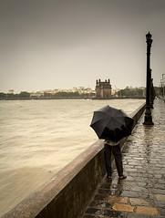 Monsoon in Mumbai (frank_bunnik) Tags: india rain umbrella asia monsoon bombay mumbai gatewayofindia blackumbrella canon2470l frankbunnik