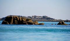 Minquiers (nsimn) Tags: sea jersey sandbank seafaris jerseyci minquiers
