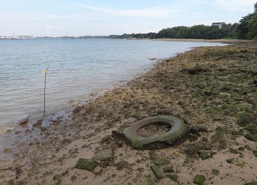Trashy Pasir Ris beach: large tyres