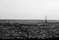 Paris (diogo.didio) Tags: city blackandwhite bw paris eiffeltower torreeiffel pretoebranco