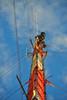 DSC_0241 (sara97) Tags: tower missouri saintlouis broadcasttower photobysaraannefinke copyright©2013saraannefinke
