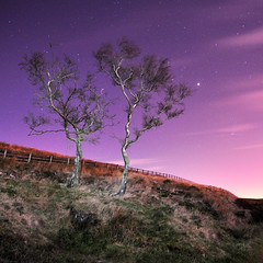 Two Trees and a Million Stars (Sandra... Back on the Radar) Tags: longexposure trees light sky painting stars landscape nightscape hiking hike rivington moonlight torchlight