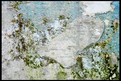 almere de groene kathedraal 08 1987 boezem m (tureluurwg) (Klaas5) Tags: sculpture holland art netherlands architecture landscape arquitectura kunst nederland architektur paysbas architettura landart architectuur landschap niederlande kunstwerk architektuur thegreencathedral degroenekathedraal ©picturebyklaasvermaas gothicgrowingproject