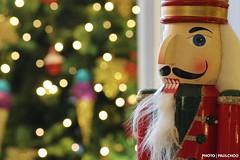 Soon it will be Christmas Day ([ ::: paulchoo photography ::: ]) Tags: christmas malaysia shoppingmall kualalumpur canoneos700d