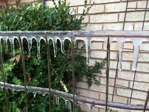 Still frozen