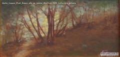 Giulio Cesare Prati Bosco olio su tavola 20x41cm 1929 Collezione privata