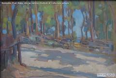 Romualdo Prati Bosco olio su cartone 24x36cm di Collezione privata