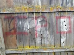 INDIAN POWER ORGANIZATON (northwestgangs) Tags: spokane ipo gangs bloods crips ganggraffiti surenos nortenos nativewarriors rivalgangs redboyz ninedeuce