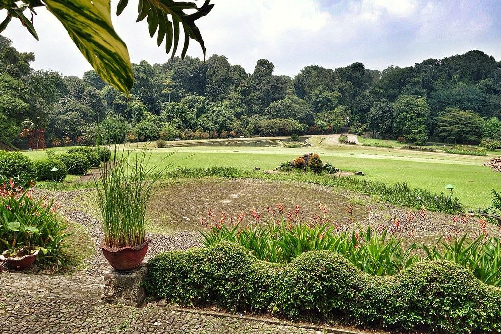 Botanischer Garten Bogor by macronix, on Flickr