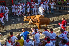 "6toros San Fermín Festival Pamplona 2013, Spain-7 <a style=""margin-left:10px; font-size:0.8em;"" href=""http://www.flickr.com/photos/116167095@N07/12268361935/"" target=""_blank"">@flickr</a>"