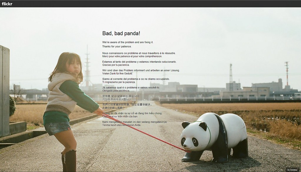 Flickr Bad Panda