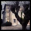 Villa Chiozza (Cristina Birri) Tags: parco villa turismo friuli finestre udine gelso cervignano scodovacca villachiozza
