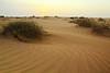 Desert beauty! (Ali:18 (علي الطميحي)) Tags: sunset sand desert saudi arabia غروب صحراء رمال جيزان sabya جازان صبيا الطمحة الطميحي