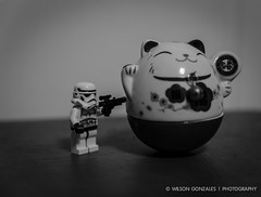 Hands_up_Lego_Stormtrooper-1 (Wilson_Gonzales_Photography) Tags: up cat toy starwars hands lego stormtrooper figurine