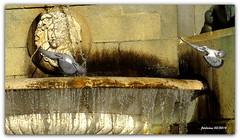 Madrid 2014-03 colgadas en el aire (ferlomu) Tags: madrid fuente paloma plazadeoriente ferlomu
