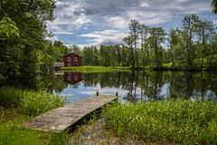 Knobesholm (MagnusBengtsson) Tags: sverige midsommar sommar landskap halland somrigt fotosondag knobesholm tunnbinderi fs150823