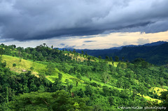 Beauty of hill top (Anam HaQue photoGraphy) Tags: trip travel trees vacation sky cloud mountain lake color colour tree green tourism nature horizontal river landscape asian outside countryside daylight scenery asia day asians tour natural outdoor weekend background hill scenic aerialview peak landmark aerial resort attractive daytime residence naturalbeauty bangladesh bandarban attraction developingcountry southasia chittagong southasian bangladeshi developingworld touristpoint bangladeshis scenicbeauty adeventure majorityworld acommodation hilltracts hillbeauty beautyofbangladesh bangladeshiimage