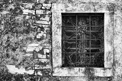 Istria, il giorno del ricordo (acid_nam) Tags: istriani rovine abbandono edera grata finestra window tragedia fiume dalmazia foibe esodo noiretblanc blackandwhite biancoenero bnw bn istria