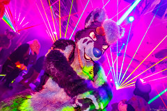 _MG_0655 (Tiger_Icecold) Tags: confuzzled cfz2016 cf2016 furcon furry convention fursuit birmingham party deaddog ddp deaddogparty