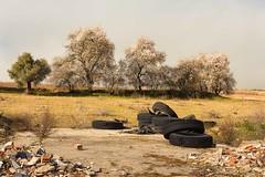 vertedero (ricardoglezgascon) Tags: vertedero dump basura trash desolado abandoned
