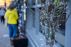 Bokeh Ball Shower (Silver Machine) Tags: winchester hampshire streetphotography street candid tree lights window yellow jacket standing outdoor bokeh bokehballs fujifilm fujifilmxt10 fujinonxf35mmf2rwr