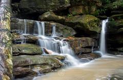 Somersby Falls NSW (TMCiantar) Tags: waterfalls water waterfall slowexposure longexposure local central coast nsw australia somersby rain rocks rainforest trees bush nature happy place slippery landscape