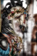 Flower Girl (joannemariol) Tags: carousel carouselhorse merrygoround mansfieldohio nikond50 snapseed icolorama