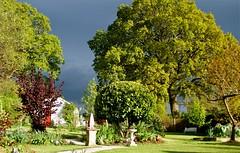 Summer Sky (annicariad) Tags: wales garden cymru greysky eveninglight annicariad