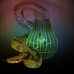 Fear and uncertainty (jaci XIII) Tags: bird lamp cobra snake surrealism pssaro lmpada surrealismo