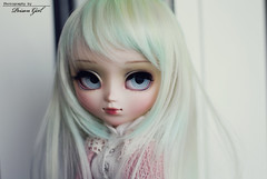 Boo - Pullip Galene (-Poison Girl-) Tags: blue green girl eyes doll long dolls eyelashes body boo fairy planning jp wig groove pullip poison limited pullips jun poisongirl leeke obitsu eyechips junplanning galene rewigged rechipped