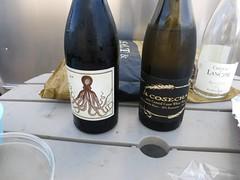 Bolsa Chica Camping 2013-140.JPG (djfrantic) Tags: camping wine rv airstream californiacoast bolsachica holusbolus wineswedrank desupropiacosecha