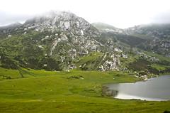Lagos_de_Covadonga_022 (gzncreative) Tags: asturias paisaje lagos montaña turismo santuario picosdeeuropa lagosdecovadonga