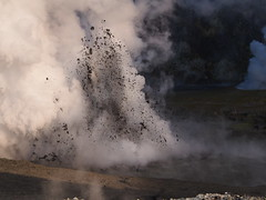 Mud eruption (blue polaris) Tags: ocean new travel sea white landscape island vent volcano bay scenery pacific north olympus aerial steam helicopter zealand crater nz geo volcanic geothermal plenty frontier vents omd bop whakatane fumarole fumaroles em5 whaakari