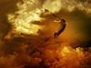 IMG_1710+0846b flying stork (pinktigger) Tags: sky bird nature clouds nuvole digitalart cielo omg stork cegonha cigüeña nwn storch cigogne ooievaar fagagna notaterrorist herecomesthesun cicogna welikeit oasideiquadris takenwithlove artonflickr feagne unitedworldphotographers interestinggroup mindigtopponalwaysontop lovelyflickr bortobewild blinkagain photographyforrecreationeliteclub thegoldenachievement goldenachievement takenwithhardwork lovelynewflickr pandaonflickr imperialphotography infinitexposure