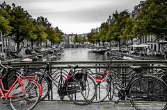 DSC_1985 (Javier Martnez Morn) Tags: amsterdam nikon bicicleta viajes dslr canales d7000
