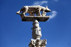 Romulus and Remus (threejumps) Tags: old italy streetart art monument statue ancient wolf italia romulus column siena plinth remus